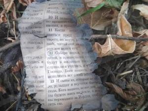 Перед массовым убийством «керченский стрелок» сжег Библию