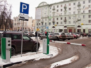 Нижегородцы предложили сделать парковку вдоль дорог платной