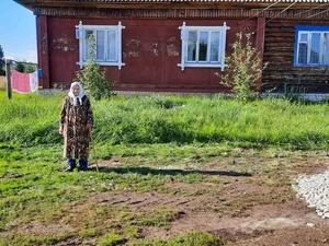 История с дорогой к дому ветерана в Керженце заинтересовала следователей