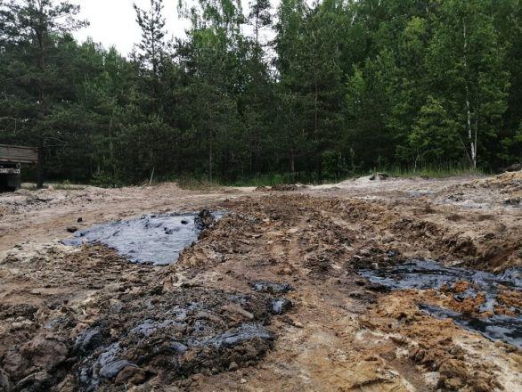 Свалку и гудронный пруд рекультивируют в Московском районе - фото 3