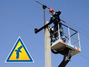«Россети» установили на линиях воздушной электропередачи более 24 тысяч птицезащитных устройств