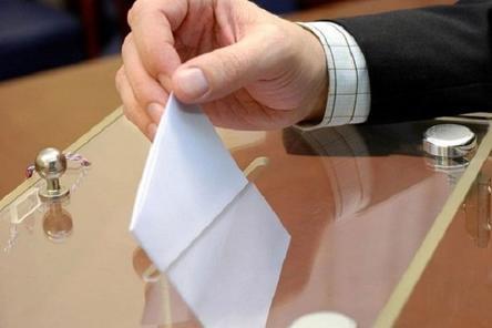 Глеб Никитин и Александр Курдюмов проголосовали на выборах губернатора Нижегородской области