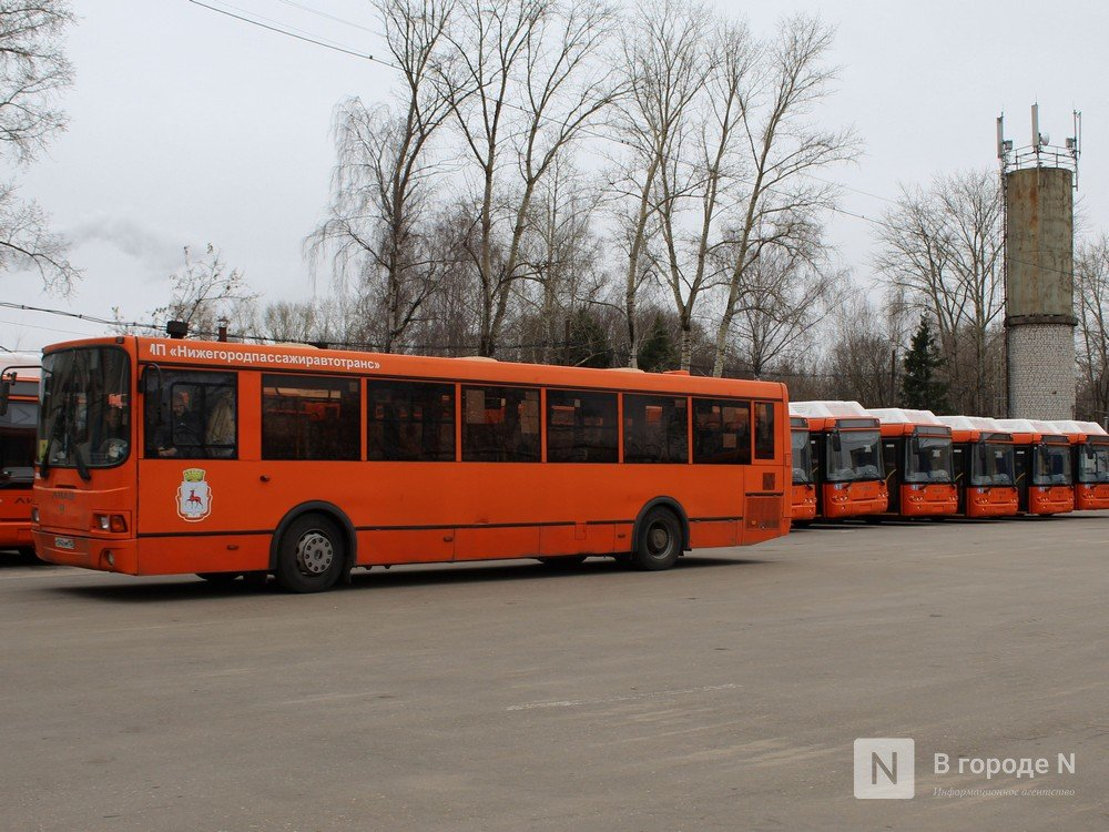 Нижний Новгород подписал контракт на поставку еще 70 автобусов - фото 1