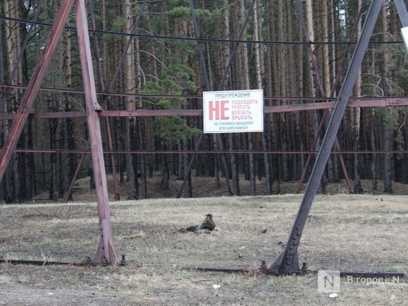 Гиперболоид инженера Шухова: судьба знаменитой башни в Дзержинске - фото 30