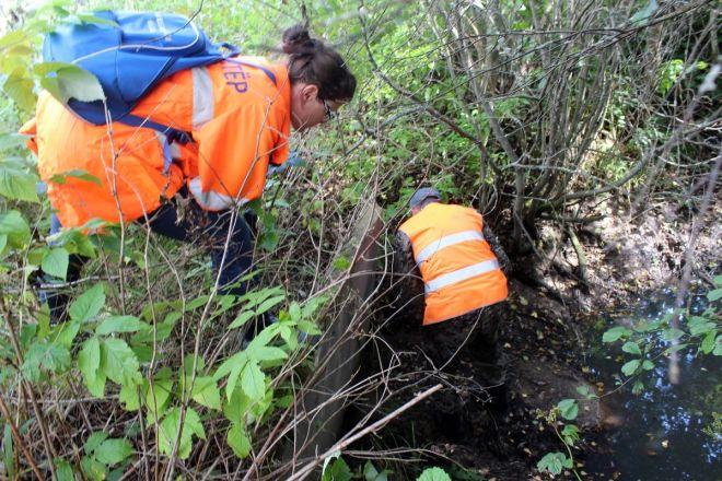 Следы обуви обнаружили поисковики на месте пропажи Зарины Авгоновой в Вознесенском районе - фото 6