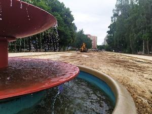 4,5 тысячи деревьев и кустарников высадят на улице Рыбакова