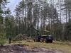 Новый лесозаготовительный комплекс запустили в Ветлужском районе