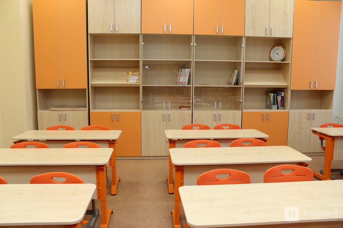 Школы Нижнего Новгорода откроются после эпидемии ОРВИ и гриппа 20 февраля - фото 1