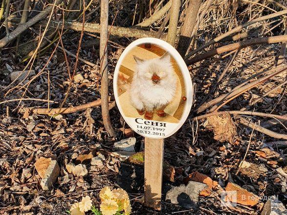 Православный крест над котом: где находится нижегородское кладбище домашних животных - фото 10
