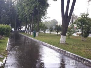 Грозы с градом накроют Нижегородскую область днем 13 июля