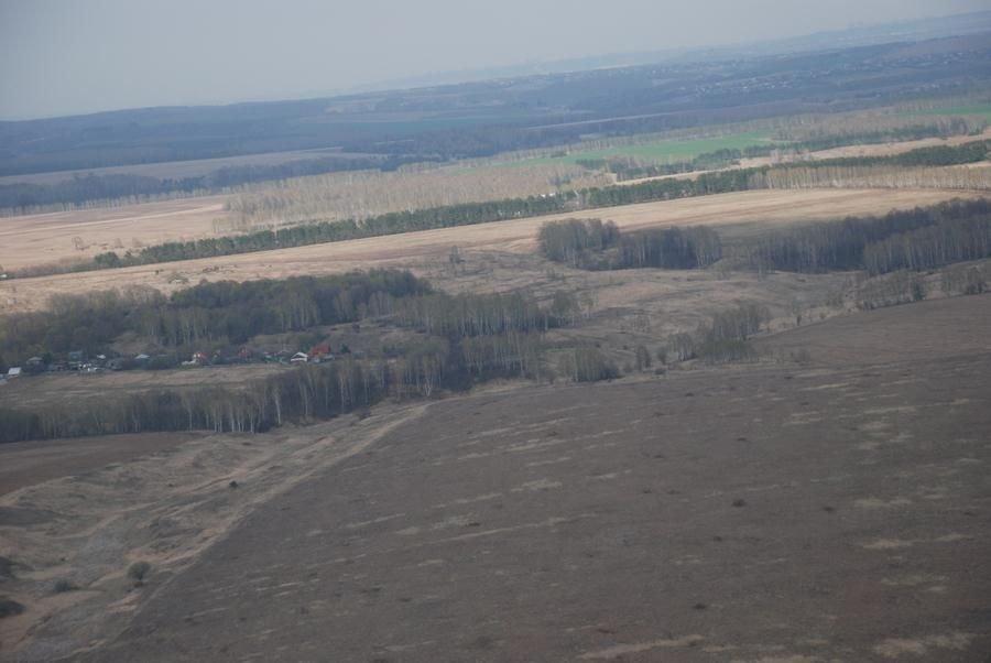 За нижегородскими лесами будут следить из космоса - фото 1