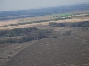 За нижегородскими лесами будут следить из космоса