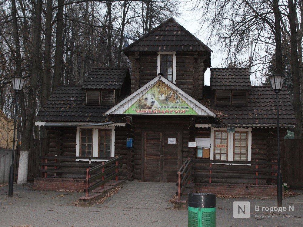 Законность закрытия нижегородского зоопарка «Мишутка» проверит прокуратура - фото 3