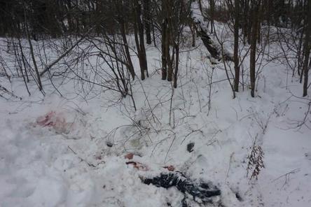 Убитая мужем нижегородка сняла их последний разговор на видео
