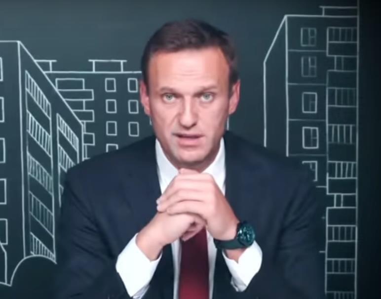 Навальный поддержал нижегородскую журналистку Ирину Славину - фото 1