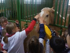 Ежегодный «Открытый урок Т Плюс» провели энергетики для воспитанников социально-реабилитационных центров
