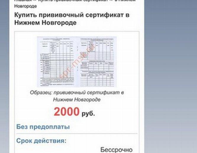 Фальшивые сертификаты о вакцинации от COVID-19 продают в Нижегородской области - фото 1