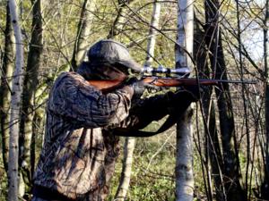 Выдачу охотничьих билетов приостановят в Нижегородской области с 31 марта